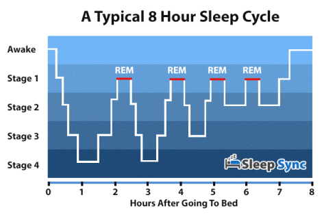 Sleep stages